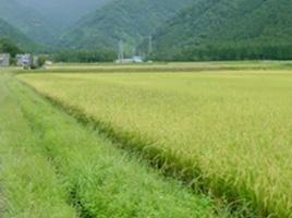有機農業に適した環境