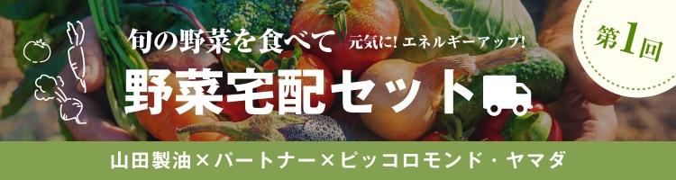 野菜宅配セット