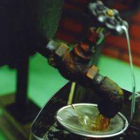 圧搾法で搾油した一番絞り